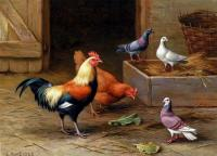 Edgar Hunt : Chickens Pigeons And A Dove