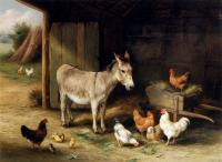 Edgar Hunt : Donkey Hens And Chickens In A Barn