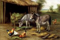 Edgar Hunt : Donkeys And Poultry