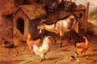 Edgar Hunt : Fowl Chicks And Goats By A Dog Kennel