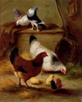 Edgar Hunt : Pigeons And Chickens