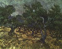 Vincent Van Gogh : The Olive Grove