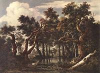 Jacob Van Ruisdael : The Marsh In A Forest