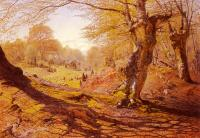Andrew MacCallum : Seasons In The Wood-Spring, The Outskirts Of Burham Wood