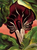 Georgia O Keeffe : Jack in the Pulpit II