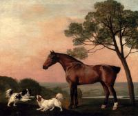 George Stubbs : A Bay Hunter With Two Spaniels