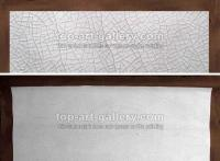 Cracked Canvas Paintings